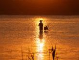 A Fisherman Theologian...?  (By Gene Dahmes)